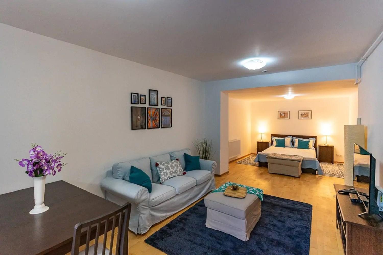 airbnb la munte sinaia blue