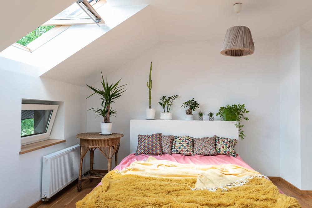 dormitor la mansardă plante