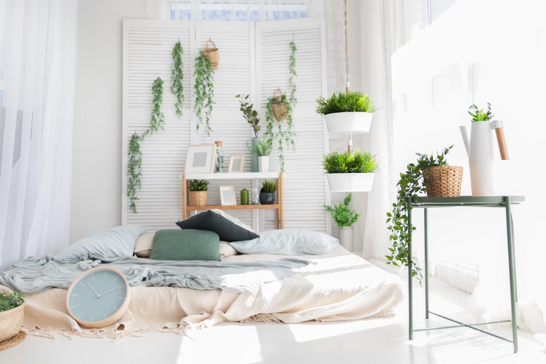 dormitor plictisitor plante