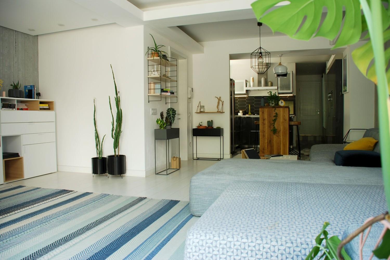 Casă din București -plante verzi in living