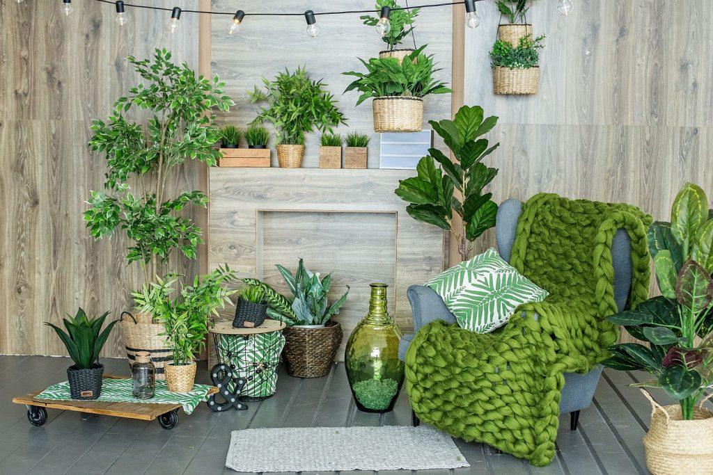 Puterea plantelor