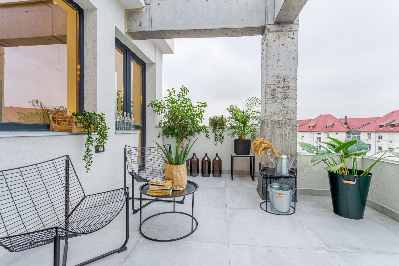 Amenajare terasă ciment beton scaune metalice