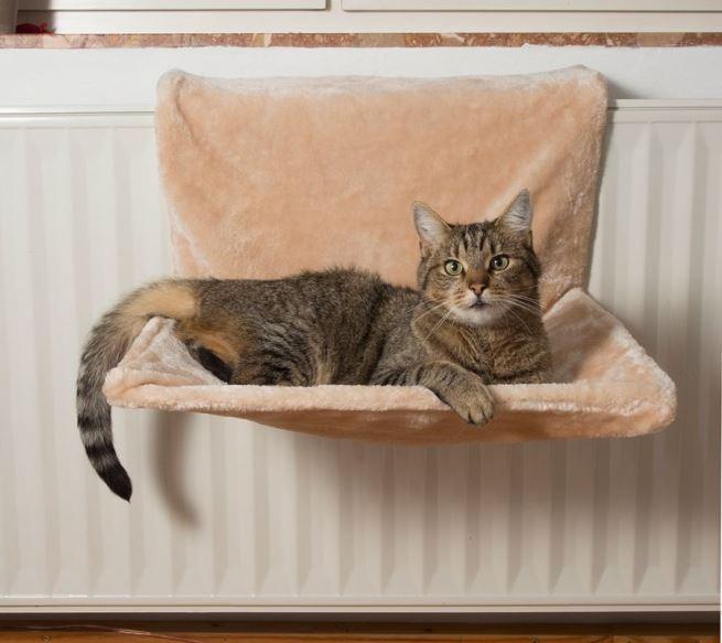 Patut pisici calorifer