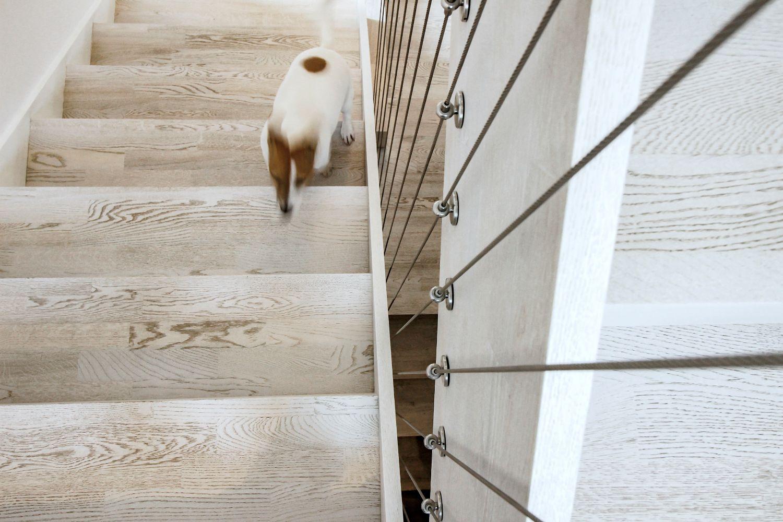 Scară interioară cu balustrada din cabluri de inox (2)