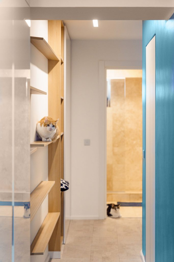 amenajare apartament bucuresti detaliu hol