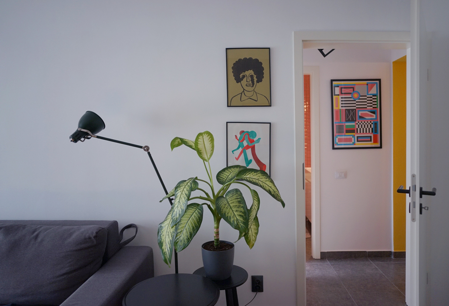 plante ilustratii si culori