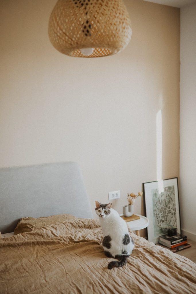 home_tour_oana_gociman_dormitor