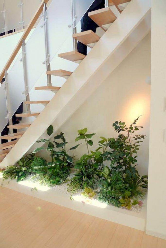 spatiu sub scari - plante 2
