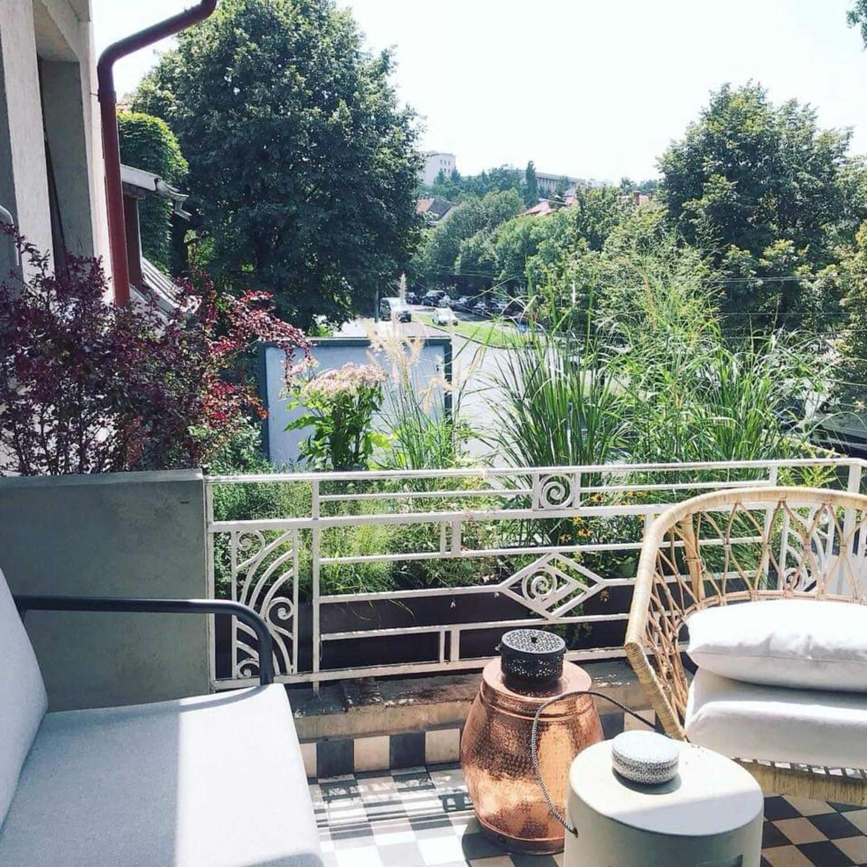 Amenajare balcon terasa cu plante - Luminița Nicorici, Primitiv Plants (5)