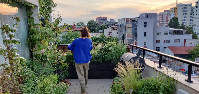 Amenajare balcon terasa cu plante - Luminița Nicorici, Primitiv Plants (8)