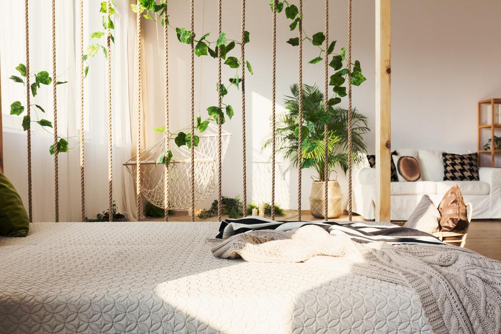 sfoară, lemn şi plante