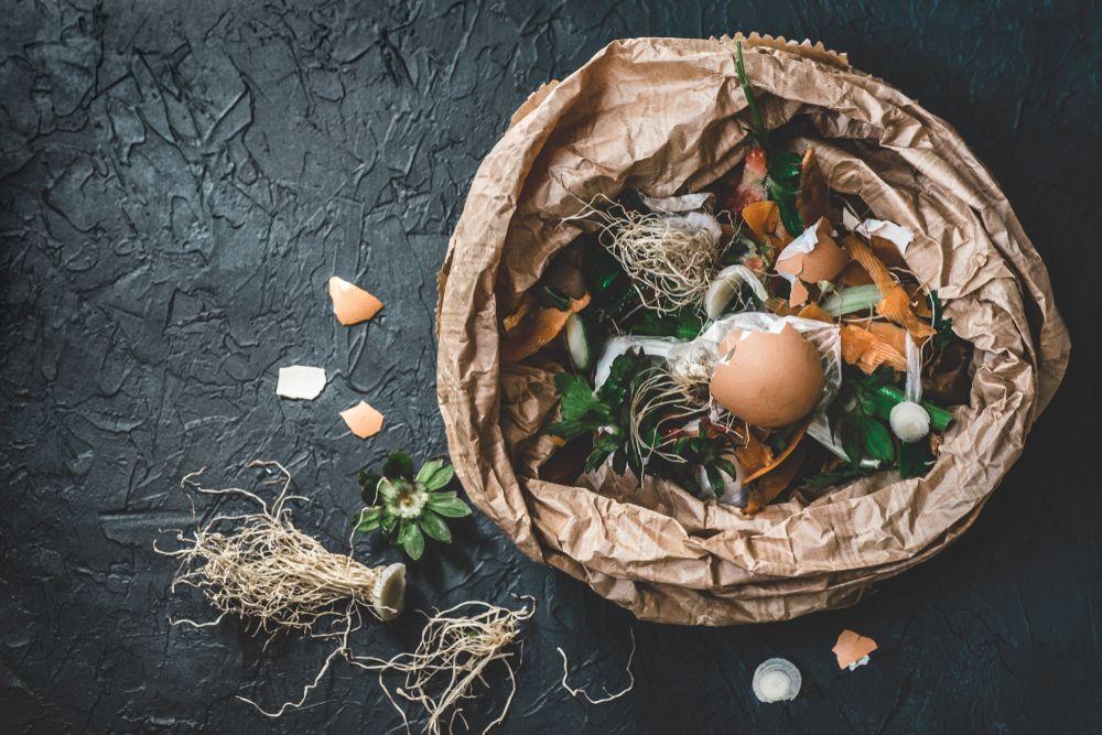 Casă eco compost