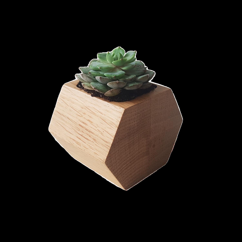 decoratiuni din lemn - ghiveci