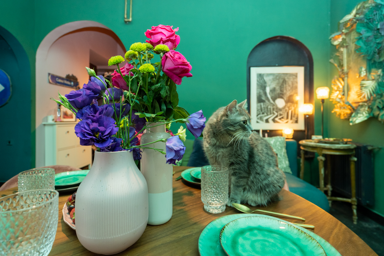 Apartament cu trei camere Calea Victoriei - acasă la arh. Larisa Rățoi - living verde masă flori pisică