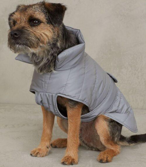 accesorii_pentru_câini_jachetă_vătuită_H_M