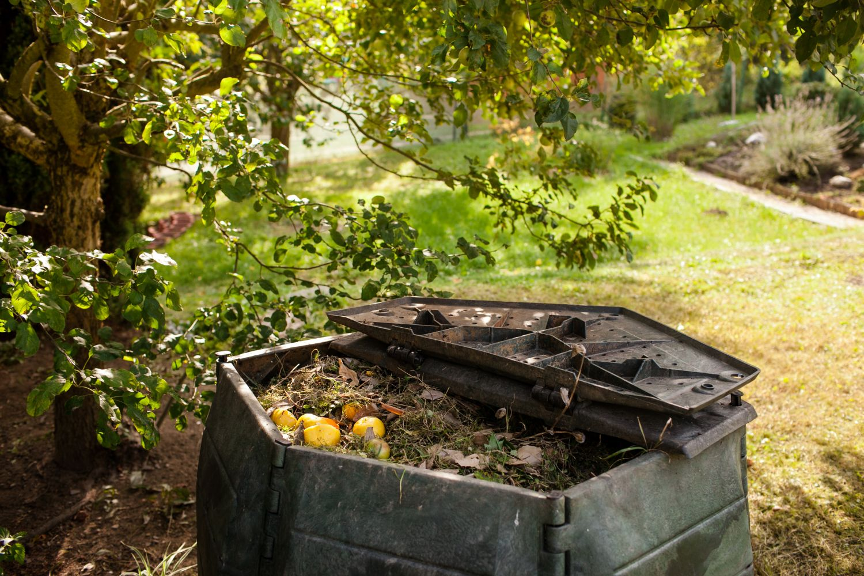 ingrasamant compost