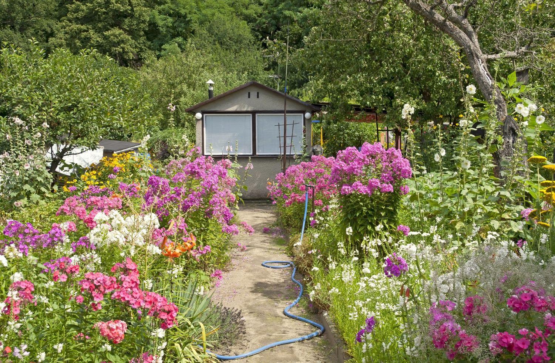 amenajare gradina cottage