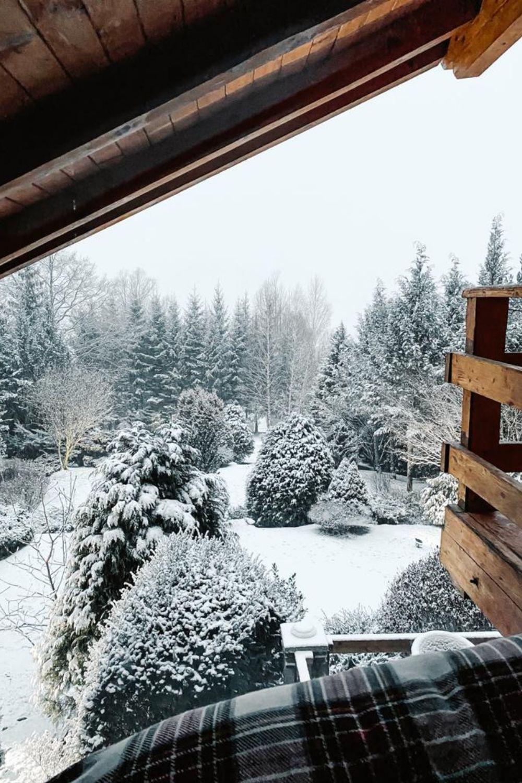 priveliste iarna casa la munte