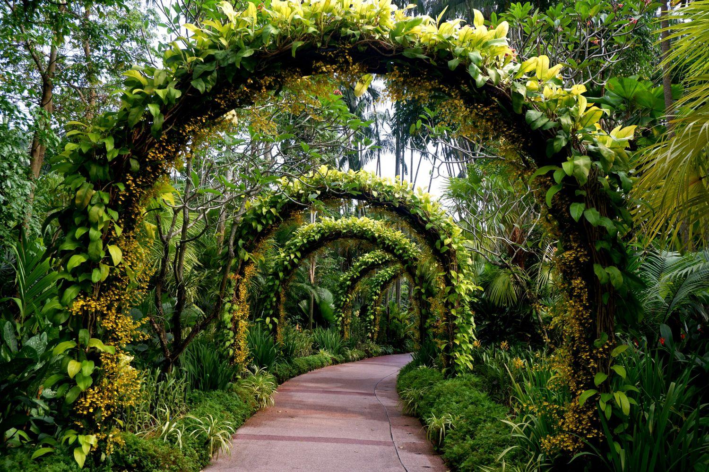 gradini botanice singapore