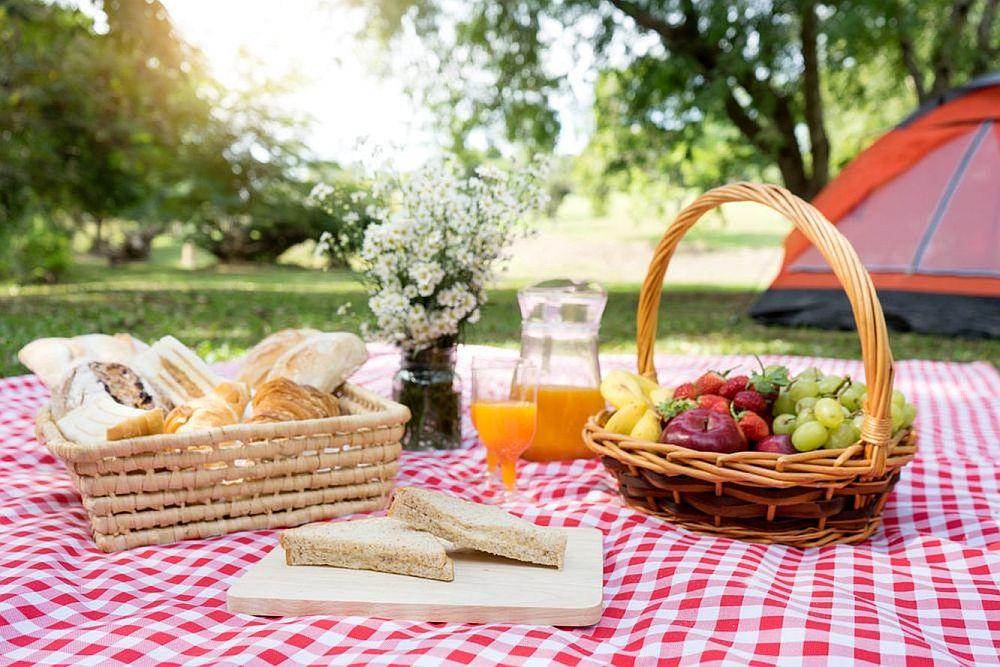 picnic instagramabil flori