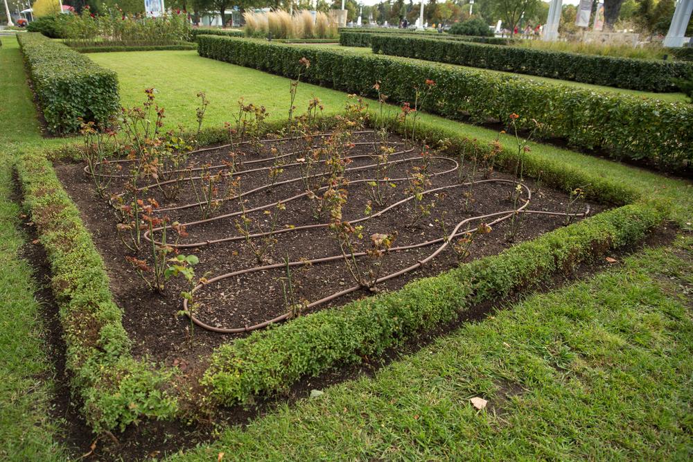 idei practice pentru grădină