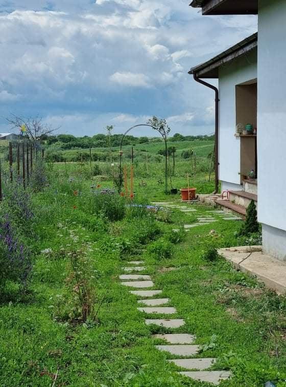 Casa are un teren de 820 de metri pătrați, unde cuplul a amenajat o grădină superbă